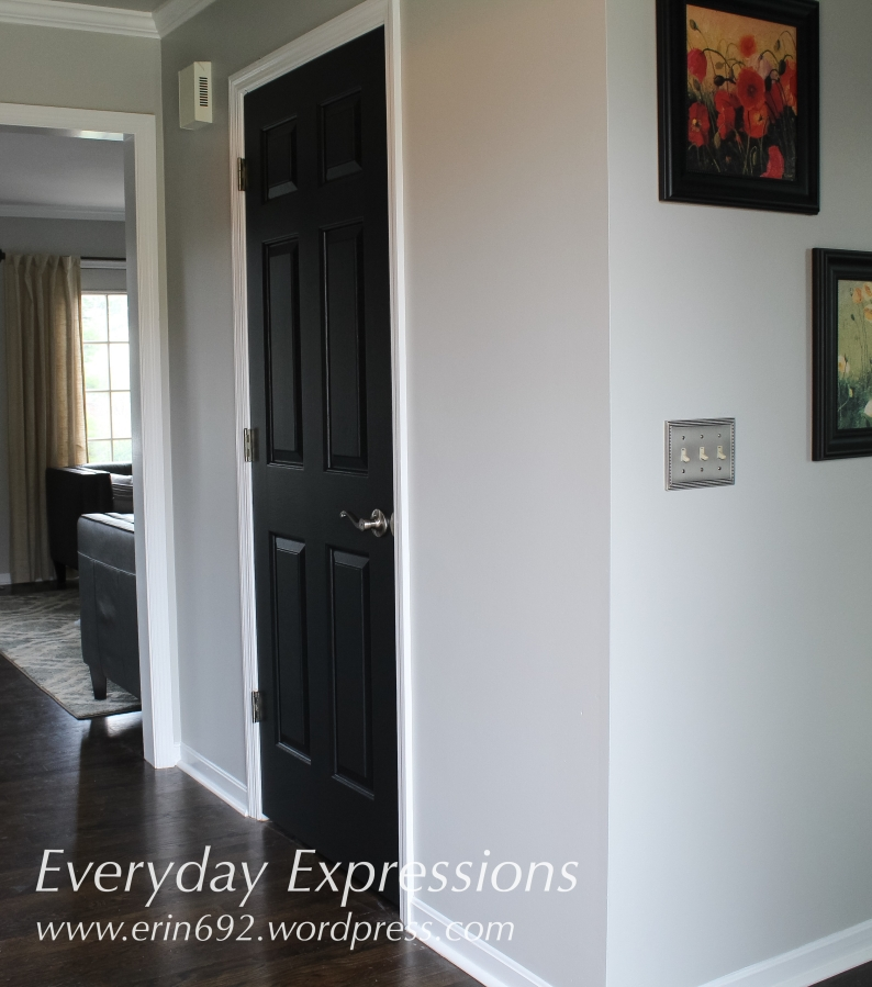 Black Interior Doors: One Day to WOW!