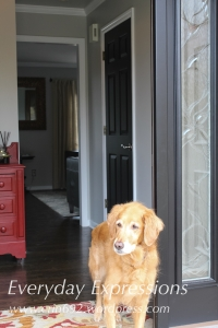 This is the view as you enter. Isn't my Riley girl posing?