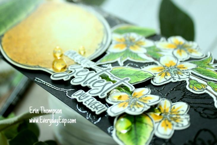 CCC lemon zest 3