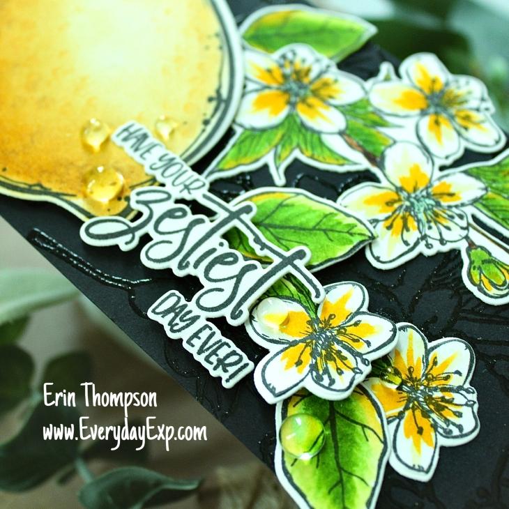 CCC lemon zest 4